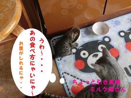 2015-07_03_04.jpg