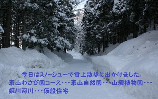 東山をスノーシューで楽しむ
