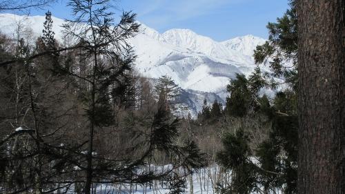 コースから見える白馬三山2