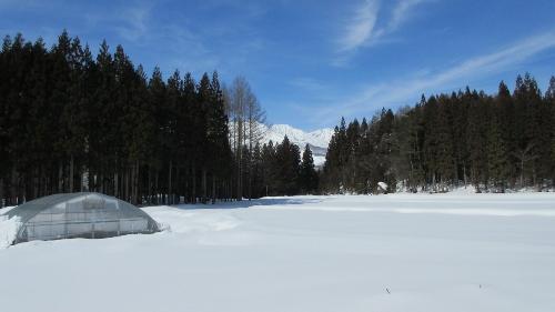 コースから見える白馬三山3