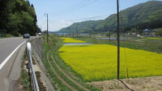 大町ダムバイクラン行程写真 (14) (520x293)
