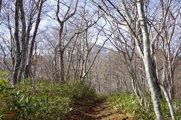 甲子山09