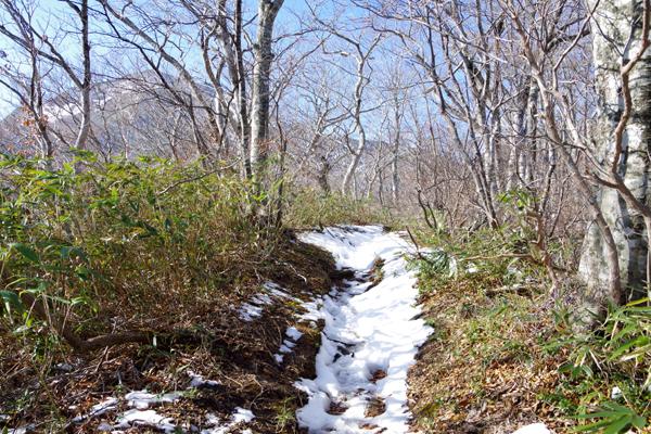 甲子山11