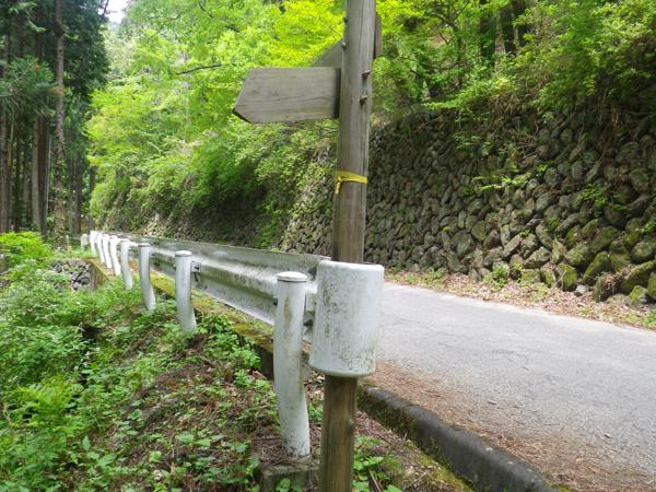 ツツジ山04