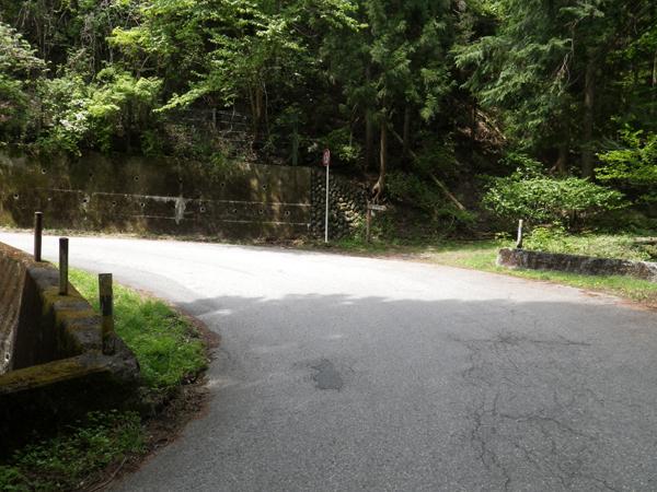 ツツジ山06