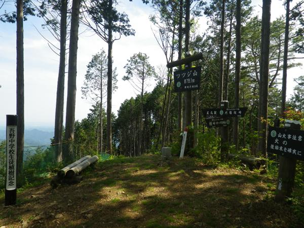 ツツジ山27