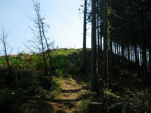 弓立山15