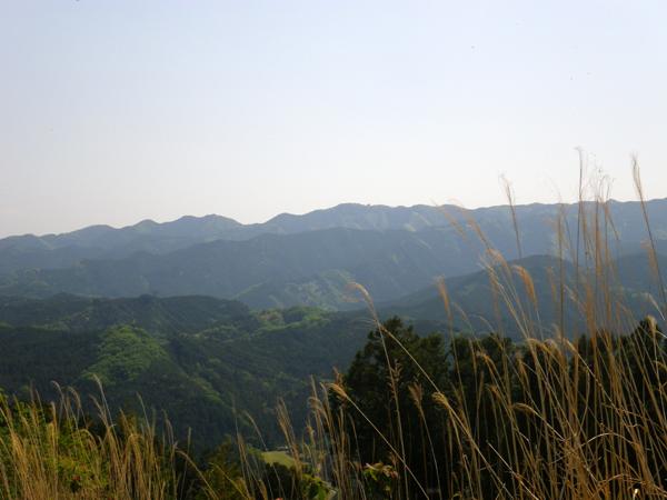 弓立山19
