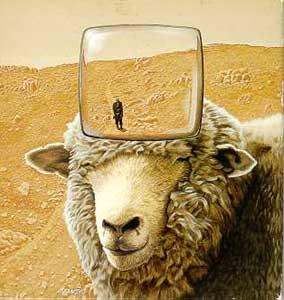 sheepdreams.jpg