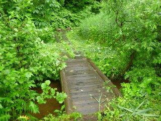 s02橋と木道