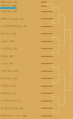 トーナメント-チルン-1501杯