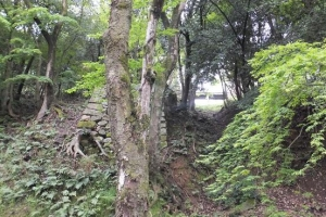 彦根城/西の丸 登り石垣