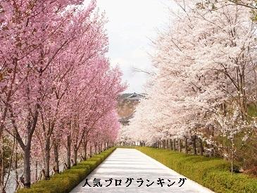 モテる女の季節の変わり目ダイエット~冬から春に向けて~(前編)1