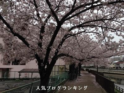 春は出逢いの季節~新生活でもモテる女である為に~1