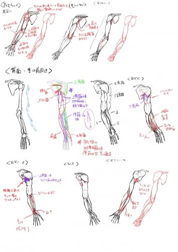 絵の勉強03