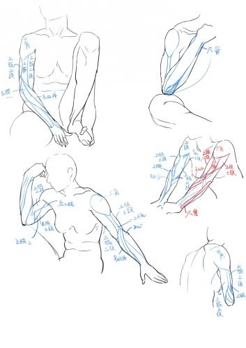 絵の勉強09