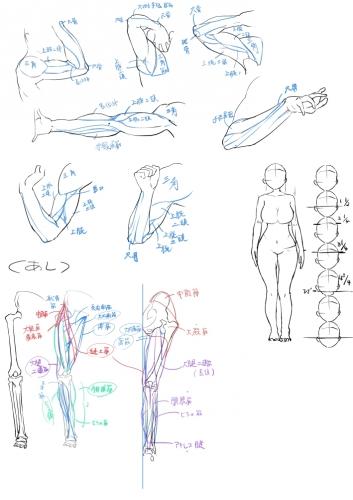絵の勉強10