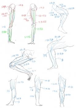絵の勉強11