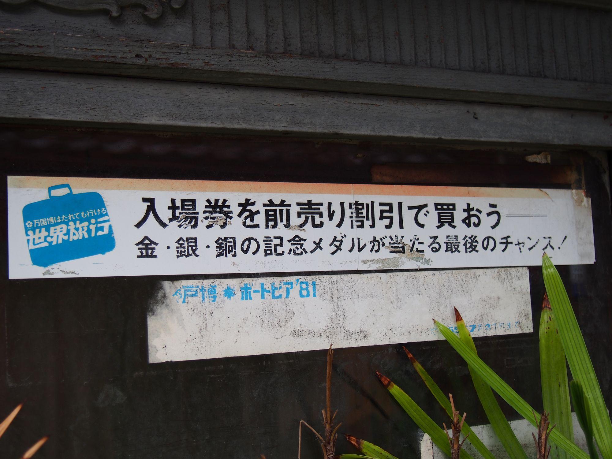P7080538.jpg