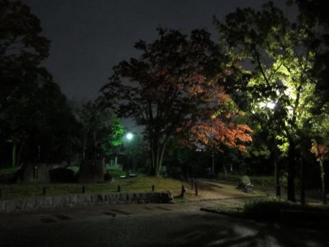 桶狭間古戦場公園夜景