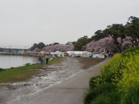 乙川河川敷