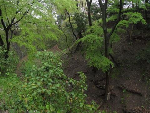 岡崎城本丸と持仏堂曲輪を隔てる空堀