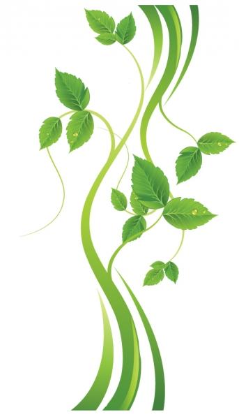 曲線が美しい緑の葉の背景 green leaf backgrounds