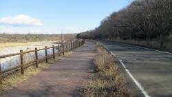 土手の道路と遊歩道