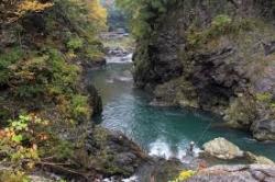 渓流釣り2
