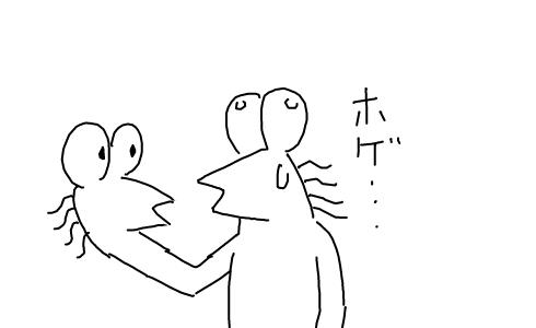 hoge ホゲ