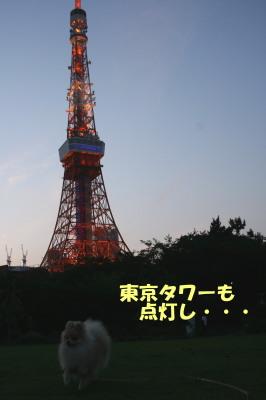 150713-11.jpg