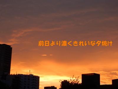 150724-7.jpg