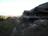 150402_京都桜旅01