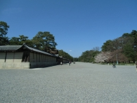 150402_京都桜旅08