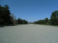 150402_京都桜旅07