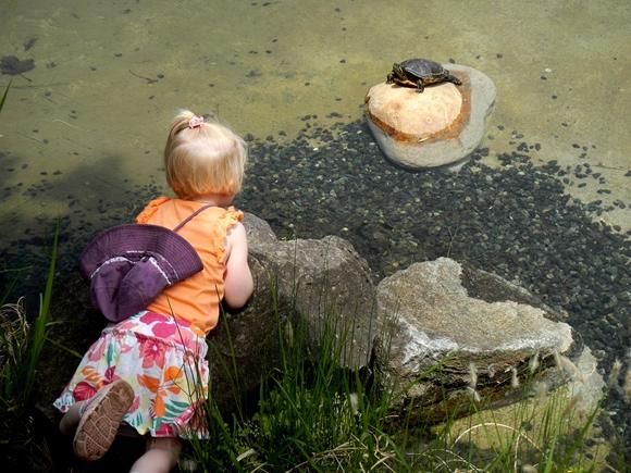池のほとり-5_R