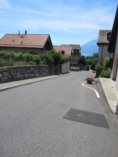 Swiss_19
