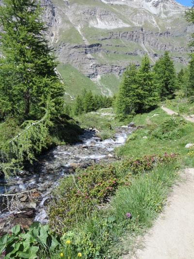 Zermatt_100