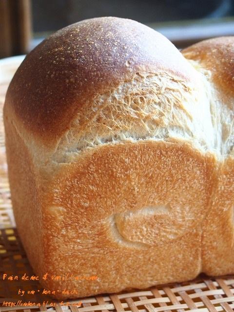 食パンとバニラクリーム1