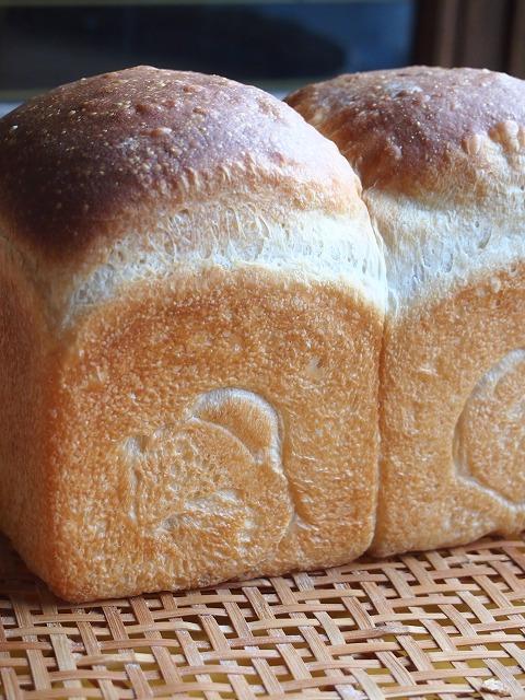 桜とパンと4