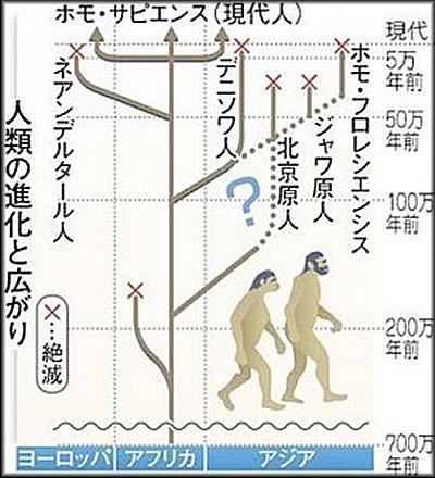 人類の進化と広がり