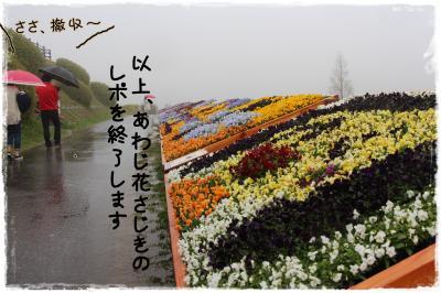 20150409-8s.jpg
