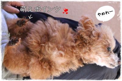 mokyu3_s.jpg