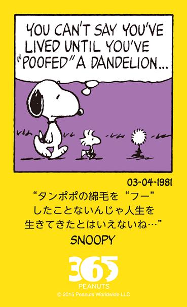 タンポポをふーしたことがないなんて!