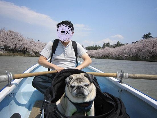 ご機嫌でポート漕いでいます(-