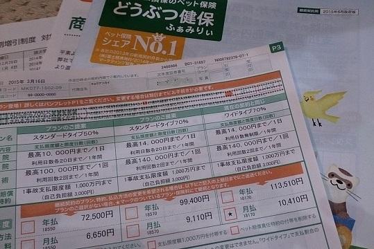 ひょえ~1万円/月を超えた!