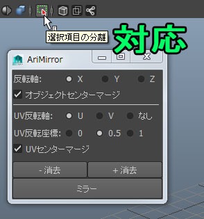 AriMirror10.jpg