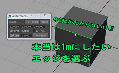 AriReFreezeScale02.jpg