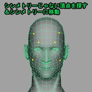 AriSymmetryChecker00.jpg