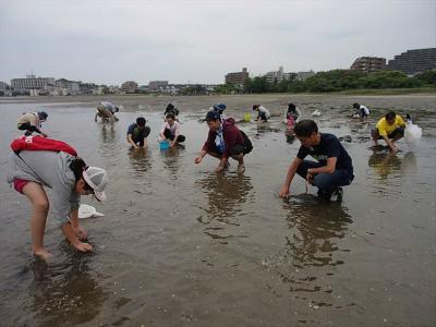 キヤノングループの潮干狩り1